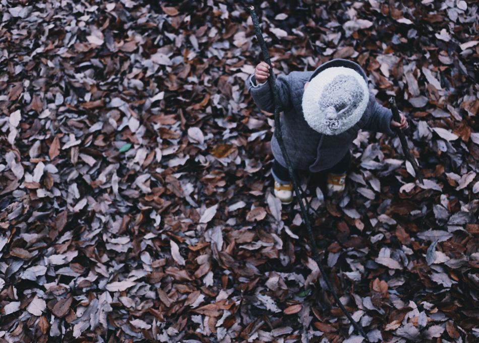 そうなると、落ち葉は記憶の積層。まちの歴史